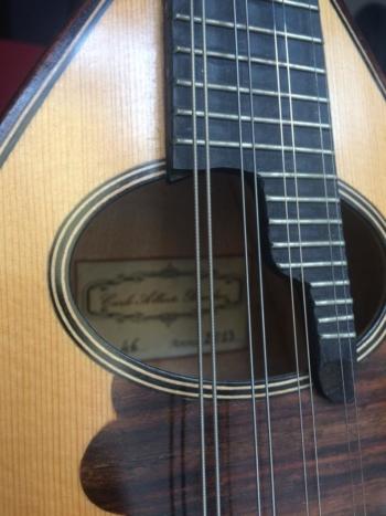 mandolino 3