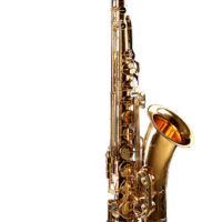 sax tenore cigalini studio