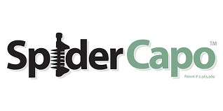 spidercapo logo