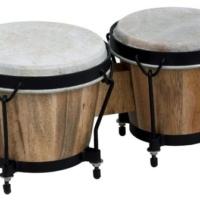 bongos club salsa